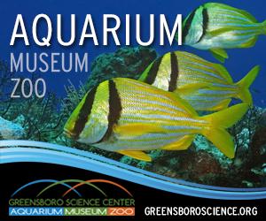 Coliseum-Banner-Ad-(Aquarium).png